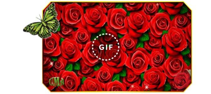 Девушки, гифка миллион алых роз