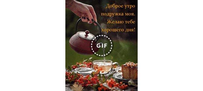 Про жириновского, открытка доброе утро подружка моя