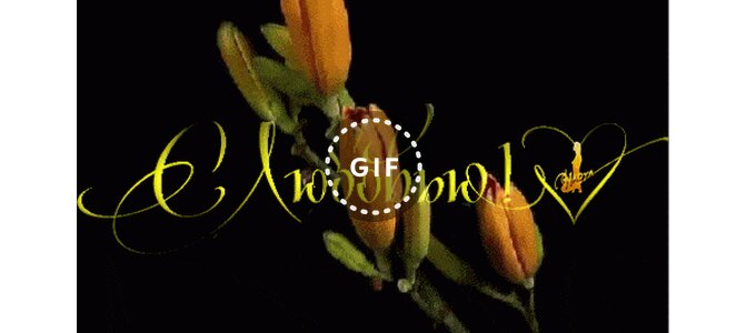 Распускающиеся цветы открытки с днем рождения